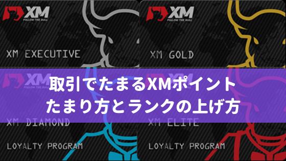 XMポイント